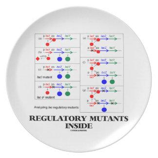 Regulatory Mutants Inside (Lac Complementation) Dinner Plate