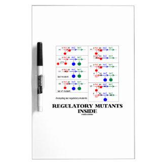 Regulatory Mutants Inside (Lac Complementation) Dry-Erase Board