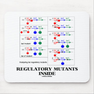 Regulatory Mutants Inside (Lac Complementation) Mouse Pad