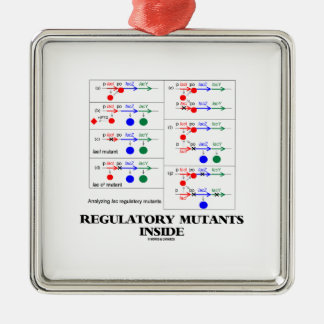 Regulatory Mutants Inside (Lac Complementation) Square Metal Christmas Ornament