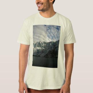 Reid Glacier T Shirt