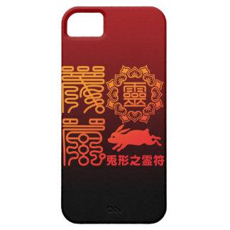 Reifu2 iPhone 5 Cases