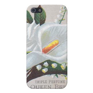Reina Bess del perfume de la tripa del vintage iPhone 5 Carcasa
