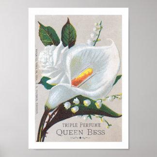 Reina Bess del perfume de la tripa del vintage Poster
