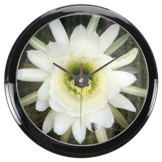 Reina de la flor del cactus de la noche, región relojes aqua clock