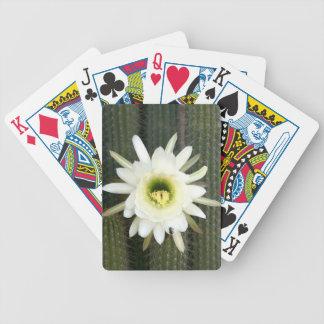 Reina de la flor del cactus de la noche, región cartas de juego