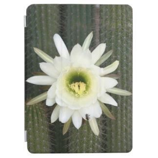 Reina de la flor del cactus de la noche, región cubierta de iPad air