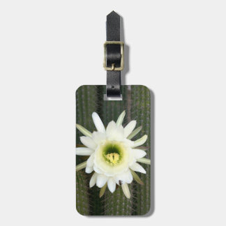 Reina de la flor del cactus de la noche, región etiqueta para equipaje