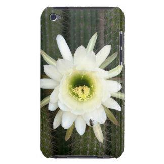 Reina de la flor del cactus de la noche, región barely there iPod cobertura