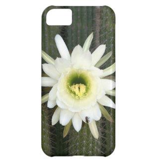 Reina de la flor del cactus de la noche, región funda para iPhone 5C