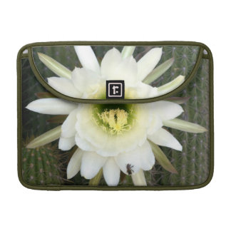 Reina de la flor del cactus de la noche, región funda para macbooks