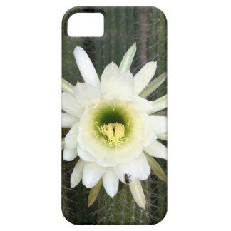 Reina de la flor del cactus de la noche, región iPhone 5 carcasa