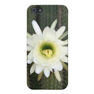 Reina de la flor del cactus de la noche, región iPhone 5 funda