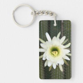 Reina de la flor del cactus de la noche, región llavero