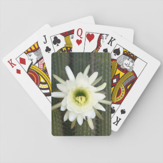 Reina de la flor del cactus de la noche, región cartas de póquer