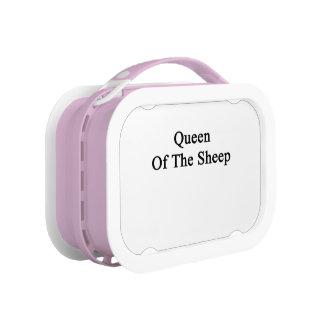 Reina de las ovejas