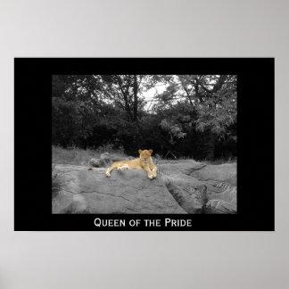 Reina del orgullo póster