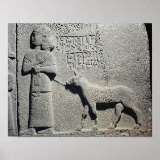 Reina Tuwarissa, esposa de rey Araras Póster
