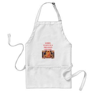 reincarnation joke adult apron
