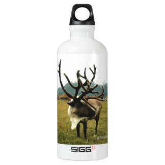 Reindeer 01 aluminum water bottle