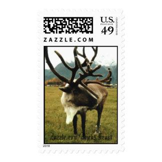 Reindeer #01, Zazzle.com/Jack9Frost Postage