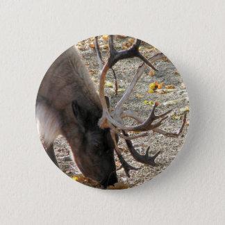 Reindeer/Caribou Pinback Button