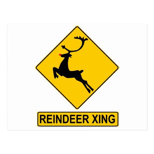 Reindeer Crossing Postcard