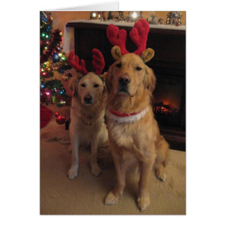 Reindeer Dogs Card
