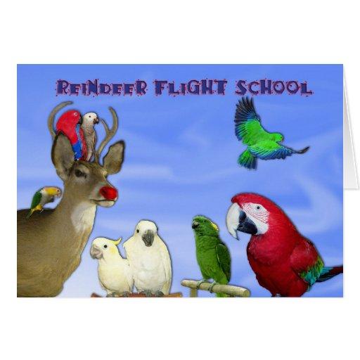 Reindeer Flight School Greeting Card