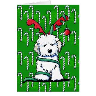 Reindeer Havanese Christmas Card