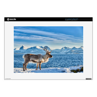 Reindeer in snow covered landscape at sea decal for laptop