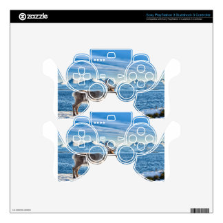 Reindeer in snow covered landscape at sea decal for PS3 controller