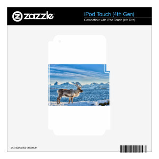 Reindeer in snow covered landscape at sea iPod touch 4G skin