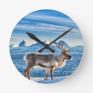 Reindeer in snow covered landscape at sea round clock