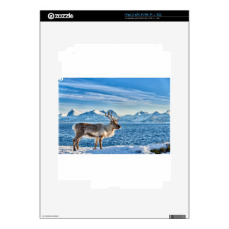 Reindeer in snow covered landscape at sea skin for iPad 2