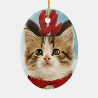 Reindeer Kitten Ornament