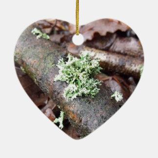 Reindeer Moss Lichen On Tree Branch Ceramic Ornament