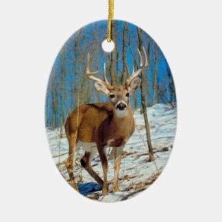 Reindeer Photo Template Xmas Keepsake Decoration Christmas Tree Ornaments