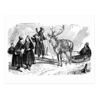 Reindeer Postcard