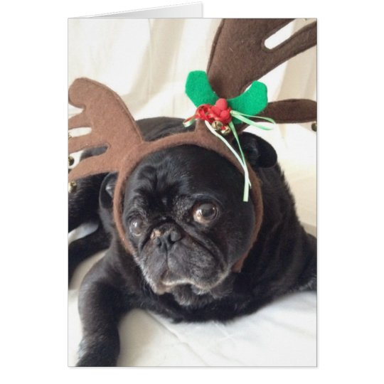 Reindeer Pug Card