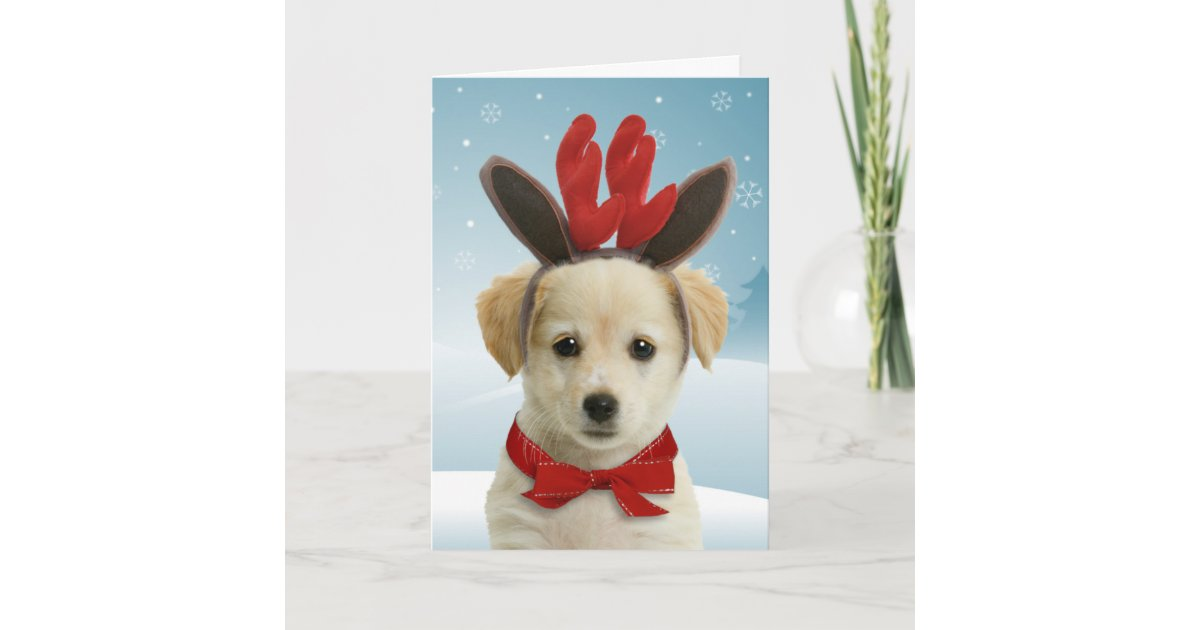Reindeer Puppy Christmas Cards | Zazzle.com