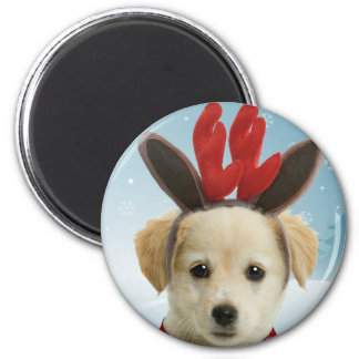 Reindeer Puppy Christmas Magnet