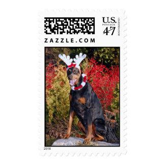 Reindobe Postage Stamp