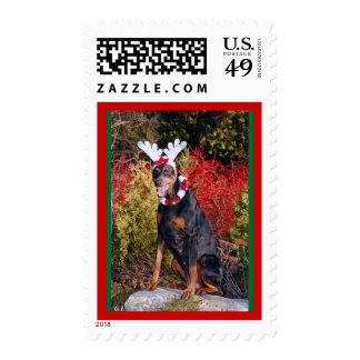 Reindobe Postage Stamp-2
