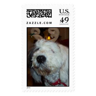 Reindog Postage