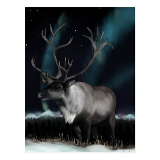 Reinedeer of the Northern Lights Postcard
