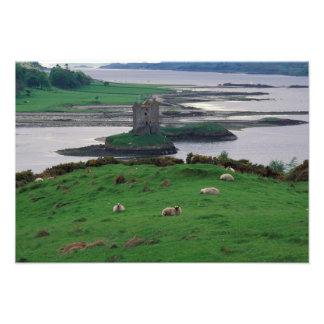 Reino Unido, Escocia, isla de Skye, vieja Cojinete