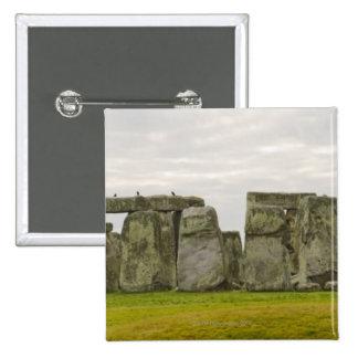 Reino Unido, Stonehenge 10 Pin Cuadrada 5 Cm