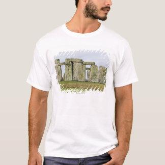 Reino Unido, Stonehenge 6 Playera