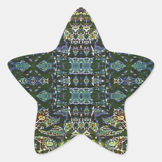 Rejilla de la complejidad pegatina en forma de estrella